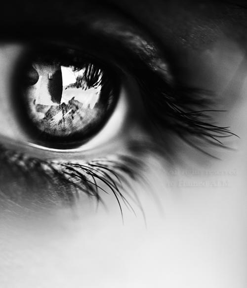 occhio.png